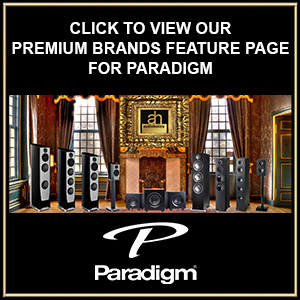 Paradigm Reciprocal Pic to Feature Page Link Template